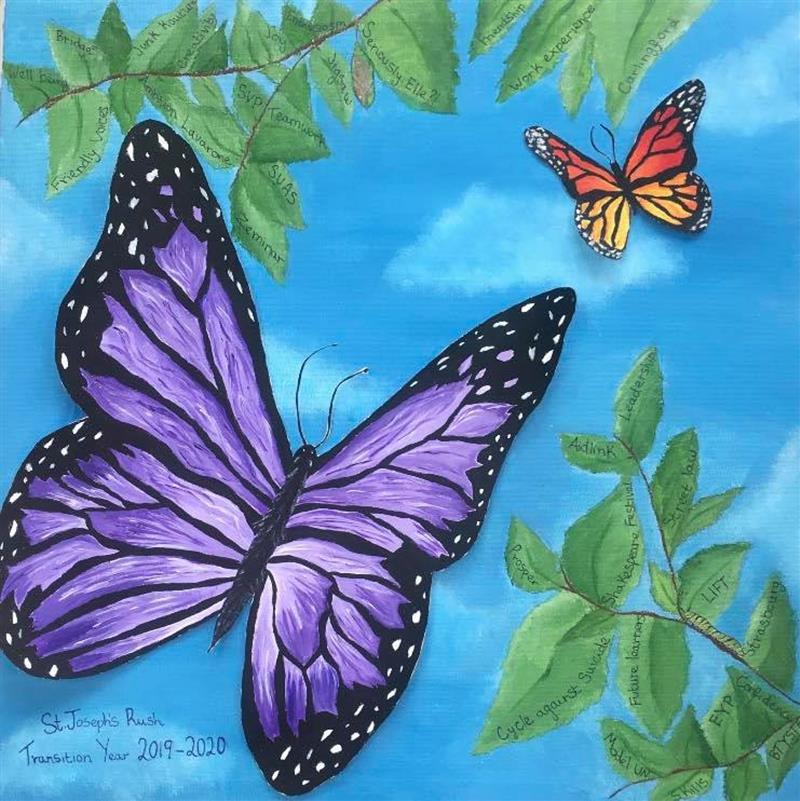 TY butterfly.jpg