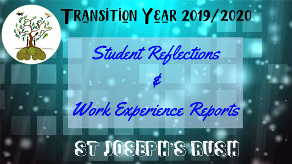 TY Student Reflections & Work Experience